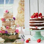 Crazy About Naked Cakes!